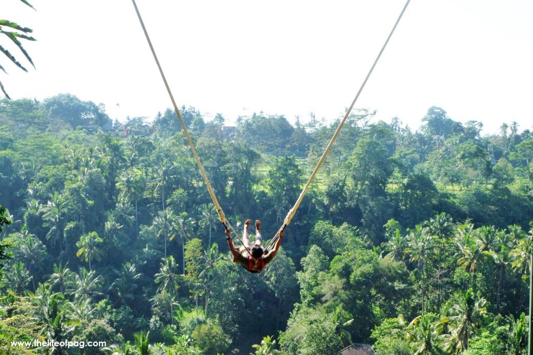 swing-5